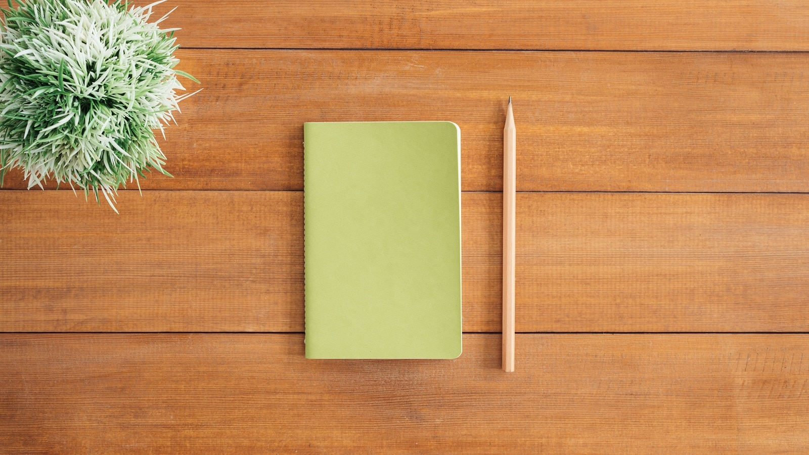 Green notebook on wooden table with plant and tan pencil besides